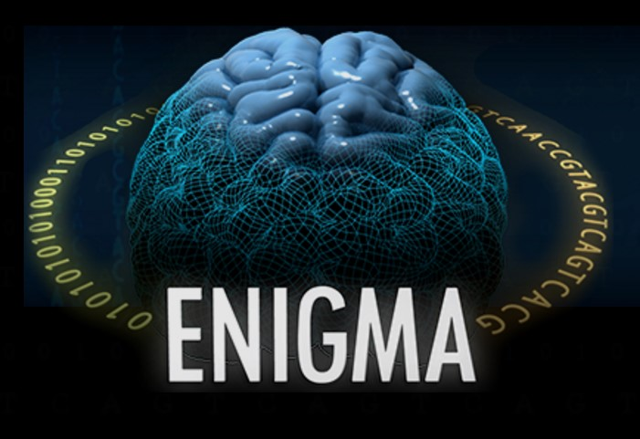 http://gigadb.org/images/data/cropped/a16-enigma.jpg